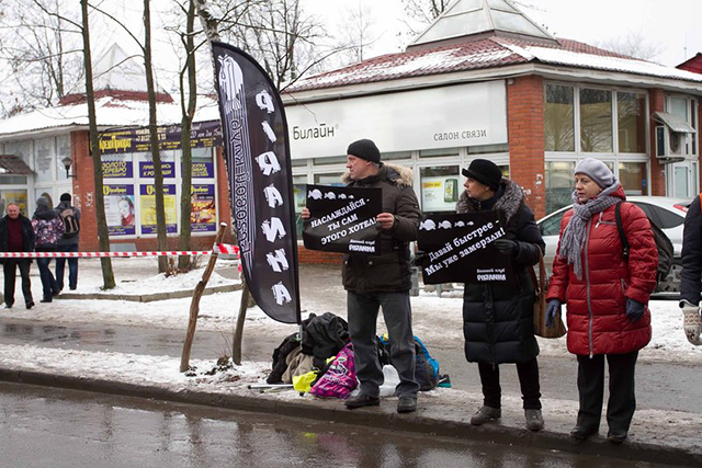 Гатчинский полумарафон поддержка с плакатами